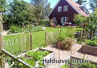 villahaver_Haldsøvej_Risskov
